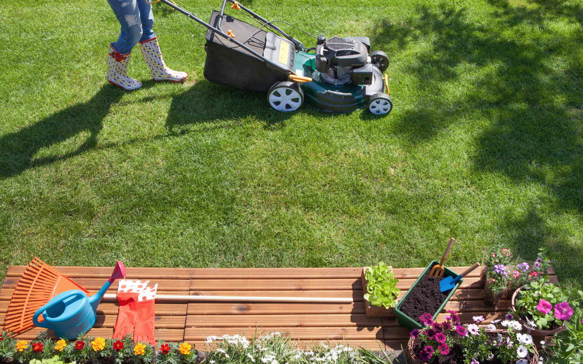 Lawn care doesn't have to be difficult