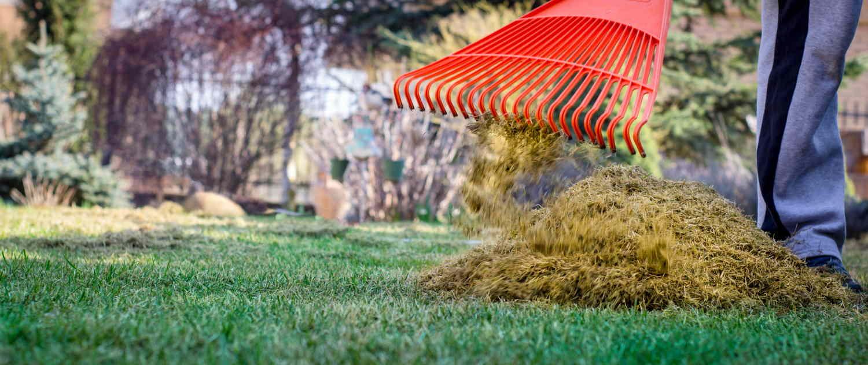 Scarifying rake