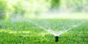 Sprinkler spraying the lawn