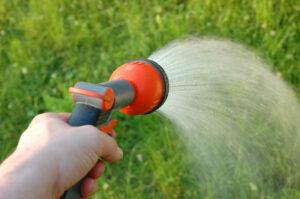 Hand holding a garden hose