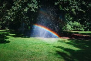 Rainbow over a shaded lawn