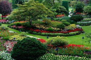 A beautiful ornamental garden
