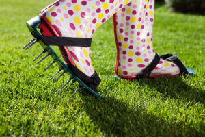 Aeration sandals to pierce holes into the lawn