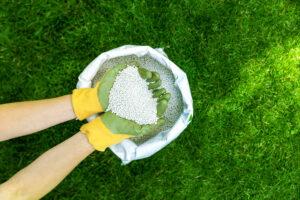 Gloved hands holding fertiliser