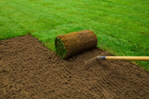 Laying new turf